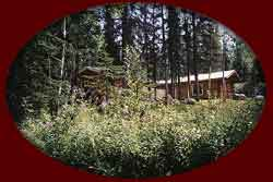 Real Alaskan Cabin rentals in south central Alaska